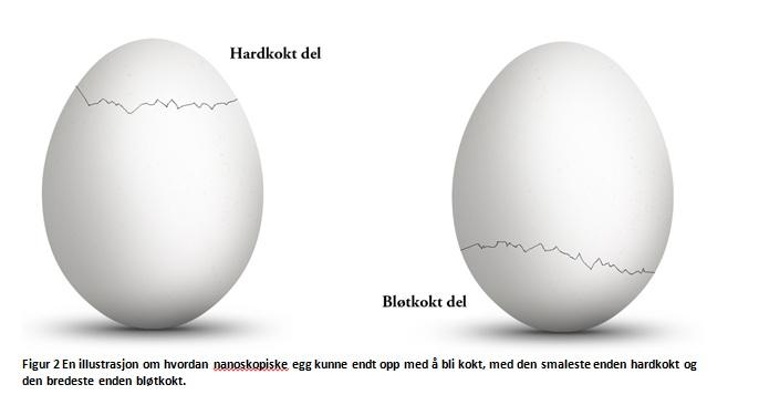 eggillustrasjon_owilhelmsen