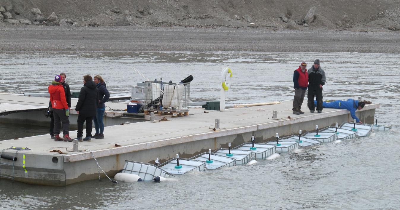 Som en del av Ocean-Certain-prosjektet gjennomføres forsøk i lukkede tanker hvor karbonstrømmer og næringskjeder i arktiske strøk underesøkes. Foto: Olav Vadstein / NTNU