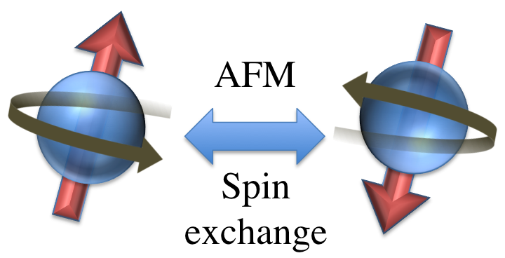 Erlend-Tveten-AFMspinexchange