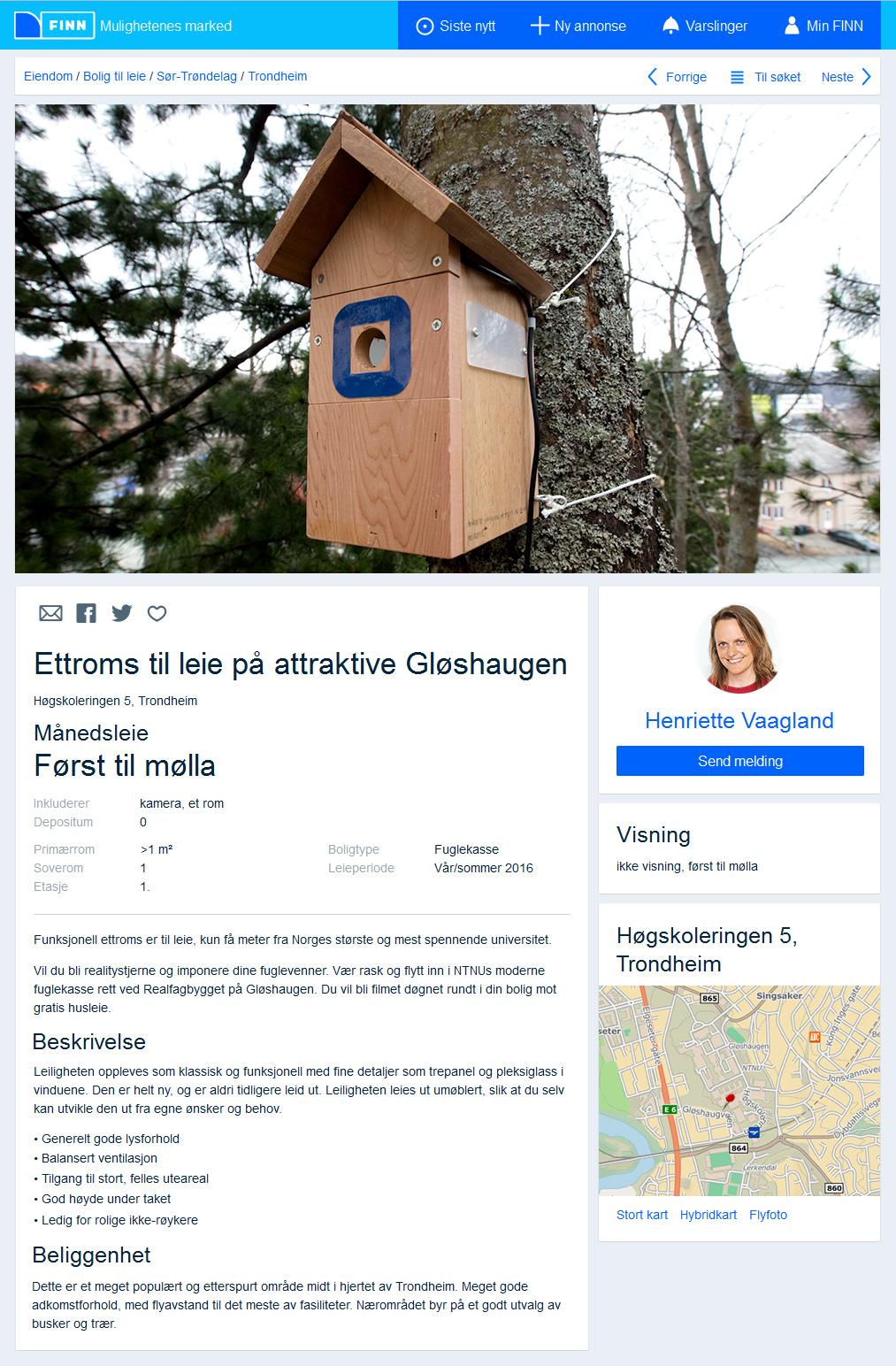 finn-annonse